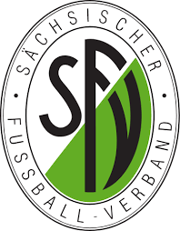 VfB Mühltroff bei Regionalmeisterschaft knapp gescheitert