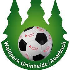 Waldpark Grünheide: Von Profis für die Zukunft lernen